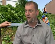 A gondozatlan zöldterületek kaszálásáról (Bogyai László)