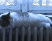 Felkészülten várja a téli időszakot a hajléktalanszálló (Nagy Zoltánné)