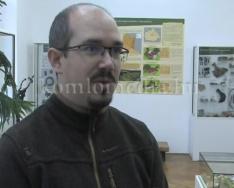 Szakmai fórumot tartottak a múzeumban (Dr. Henn Tamás)