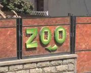 Mini Zoo - Híd természet és ember között (Faragó Endre)
