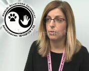 Mérgezés történt a kökönyösi kutyafuttatóban