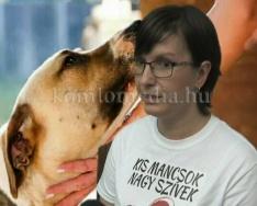 Élet egy állatvédő egyesületnél (Plaszauer Zsanett)