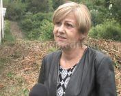 Megoldás születik a somági vaddisznó-problémára (Dr. Pál Gabriella)