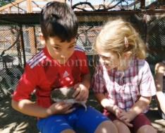 Hamarosan új lakók költöznek a komlói állatkertbe (Faragó Endre)